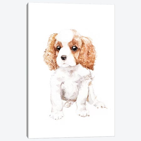 Cavalier King Charles Spaniel Canvas Print #RGF20} by Wandering Laur Canvas Wall Art