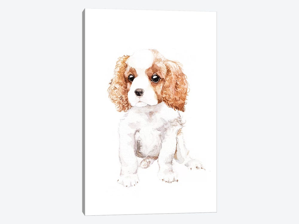 Cavalier King Charles Spaniel by Wandering Laur 1-piece Canvas Print