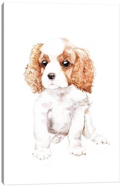 Cavalier King Charles Spaniel Canvas Art Print