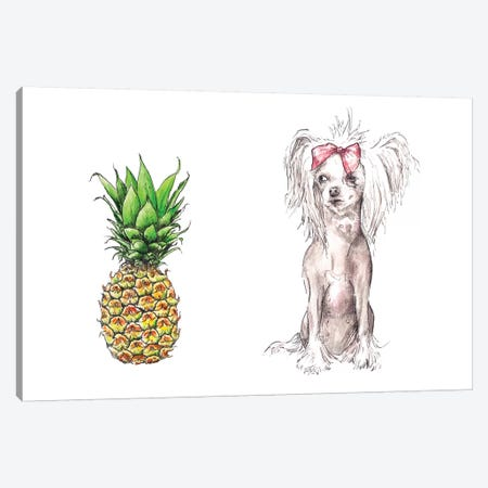 Chinese Crested And Pineapple With The Same Haircut Canvas Print #RGF21} by Wandering Laur Canvas Art