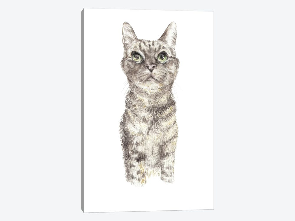 Concentrating Tabby by Wandering Laur 1-piece Canvas Print