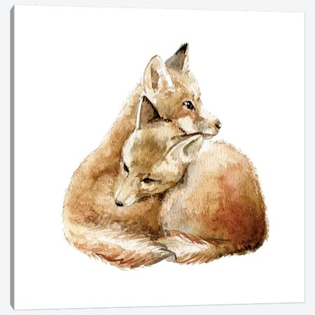 Cuddling Foxes Canvas Print #RGF28} by Wandering Laur Canvas Art