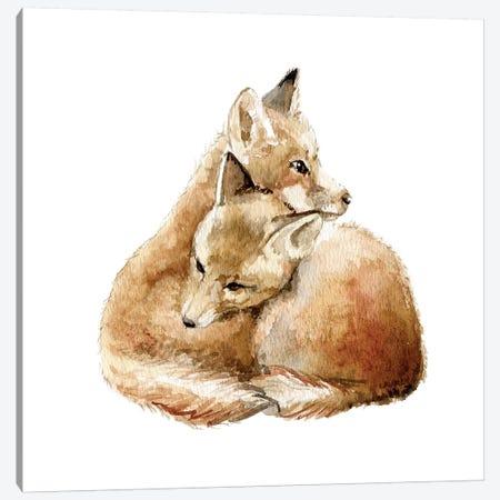 Cuddling Foxes Canvas Print #RGF28} by Wandering Laur Canvas Art
