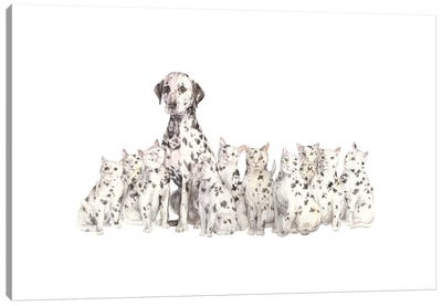 Dalmatian And Copycats Canvas Art Print