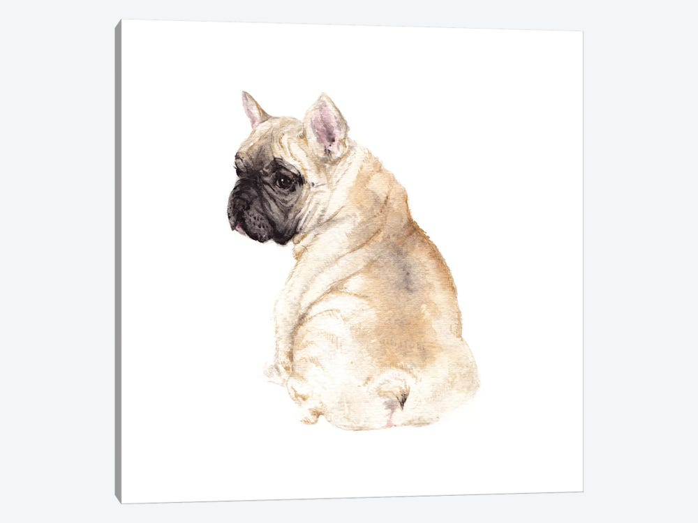 Frenchie by Wandering Laur 1-piece Canvas Artwork