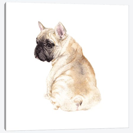 Frenchie Canvas Print #RGF32} by Wandering Laur Canvas Print
