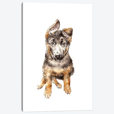German Shepherd Puppy Canvas Print #RGF35} by Wandering Laur Canvas Artwork