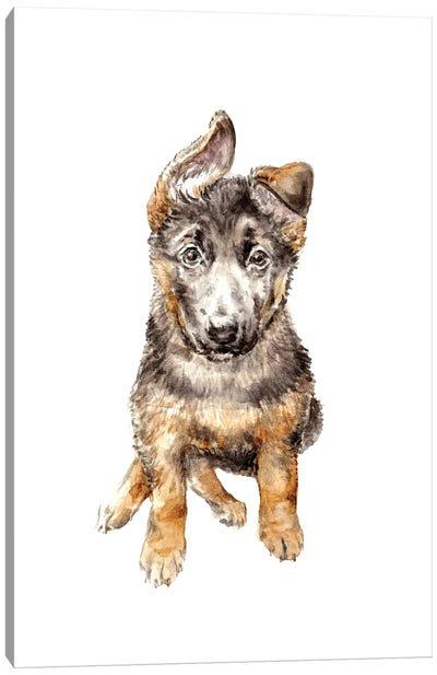 German Shepherd Puppy Canvas Art Print