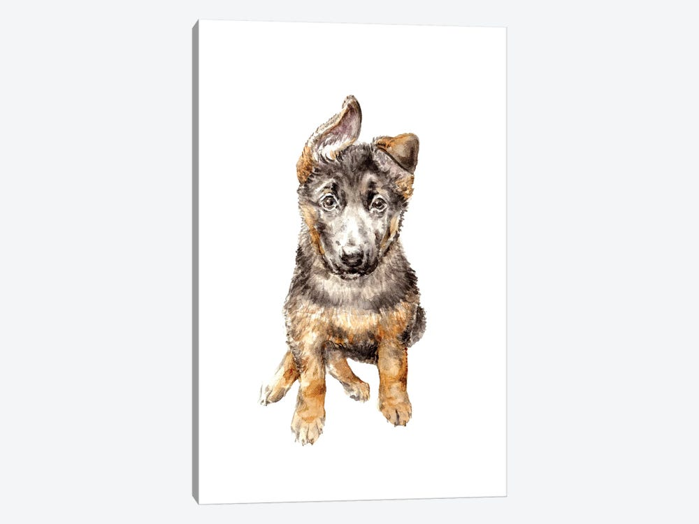 German Shepherd Puppy by Wandering Laur 1-piece Canvas Art Print