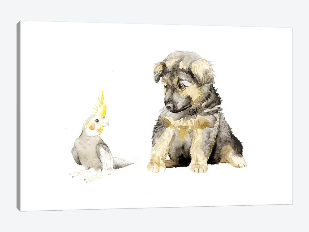 German Shepherd Puppy And Cockatiel by Wandering Laur 1-piece Canvas Artwork