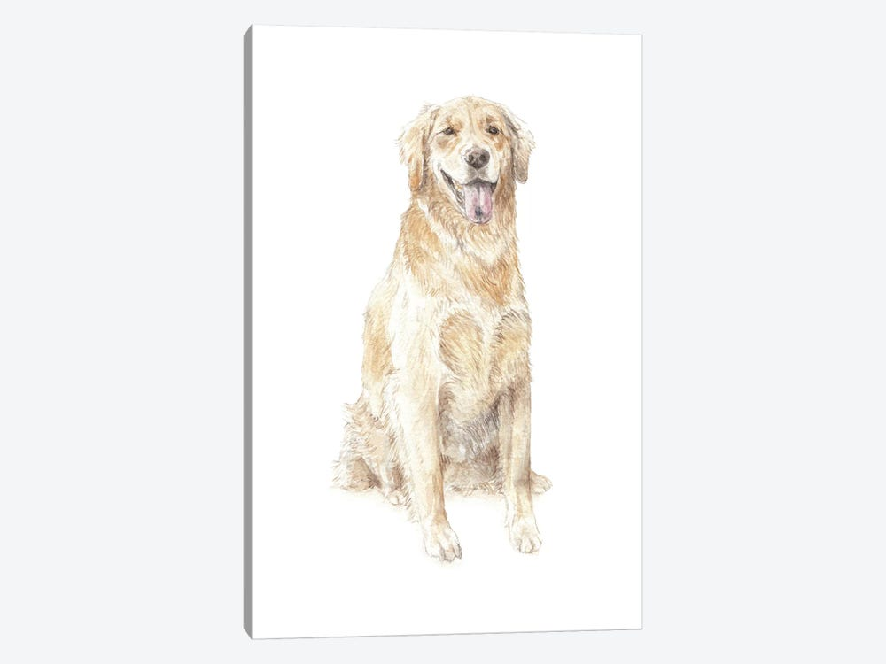 Golden Retriever by Wandering Laur 1-piece Canvas Art Print