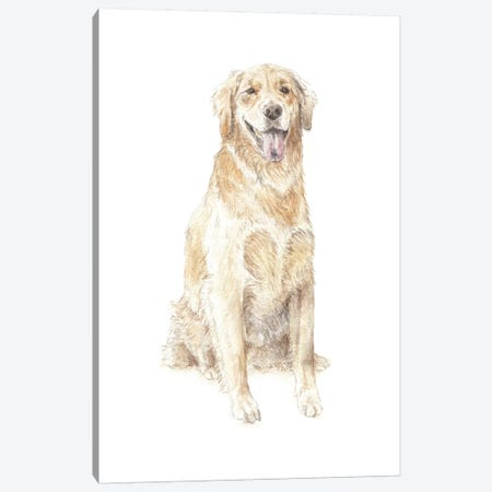 Golden Retriever Canvas Print #RGF37} by Wandering Laur Canvas Art