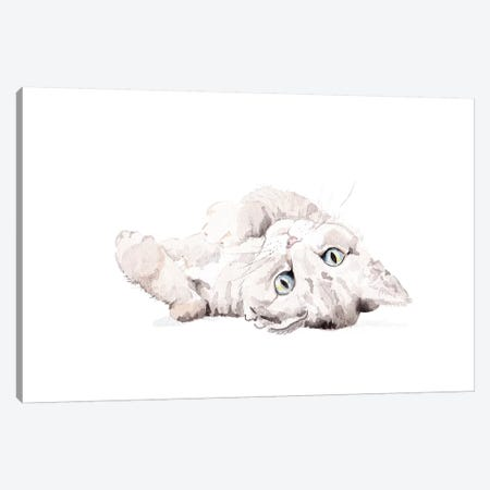 Grey Staring Cat Canvas Print #RGF38} by Wandering Laur Canvas Art Print