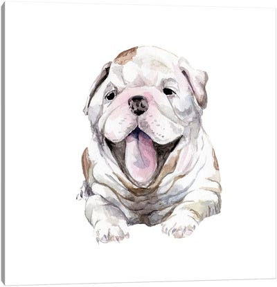 Happy Bulldog Puppy Canvas Art Print