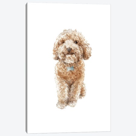 Apricot The Happy Poodle Puppy Canvas Print #RGF3} by Wandering Laur Canvas Artwork