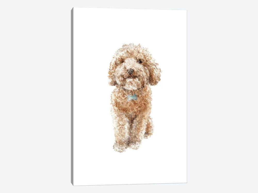 Apricot The Happy Poodle Puppy by Wandering Laur 1-piece Art Print
