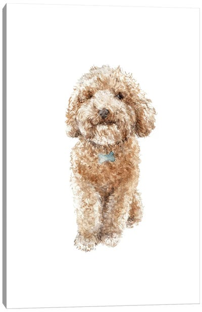 Apricot The Happy Poodle Puppy Canvas Art Print