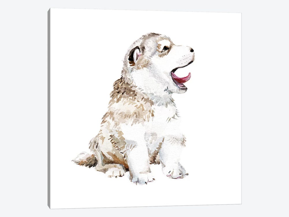 Happy Husky Puppy by Wandering Laur 1-piece Canvas Artwork