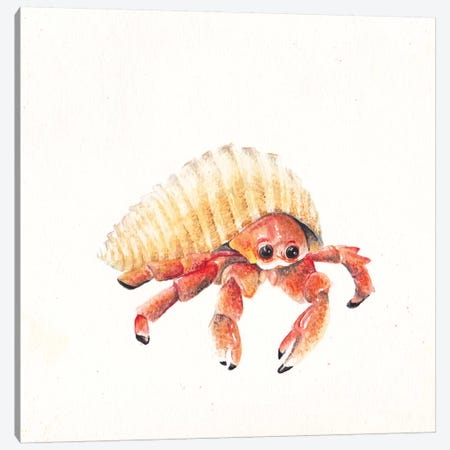 Hermit Crab Canvas Print #RGF44} by Wandering Laur Art Print