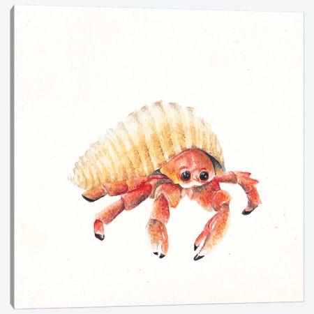 Hermit Crab Canvas Print #RGF44} by Wandering Laur Art Print