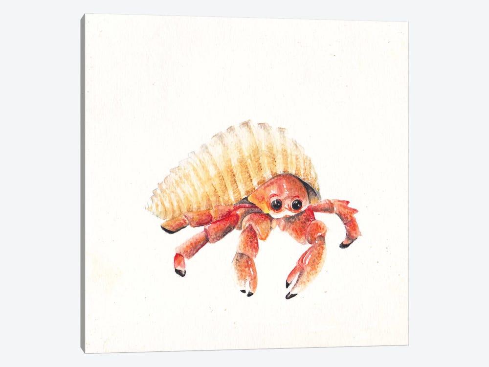 Hermit Crab by Wandering Laur 1-piece Art Print