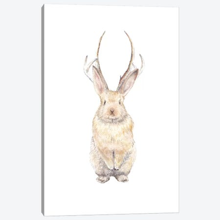 Jackalope Canvas Print #RGF48} by Wandering Laur Canvas Art