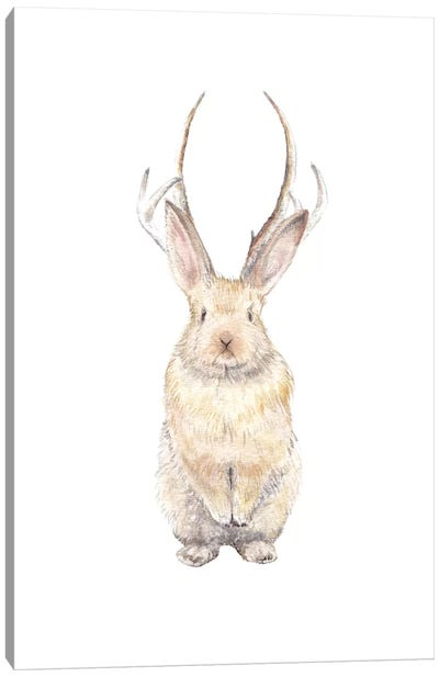 Jackalope Canvas Art Print