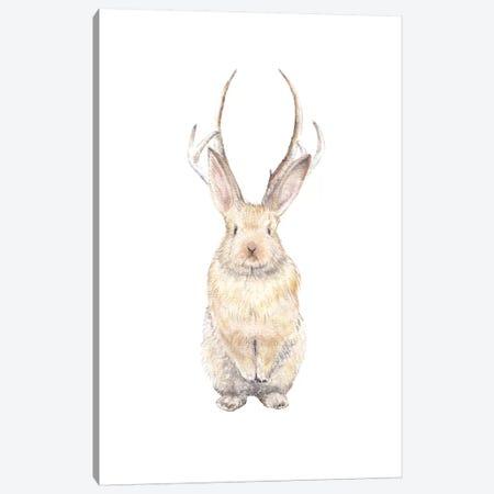 Jackalope Canvas Print #RGF48} by Wandering Laur Canvas Art