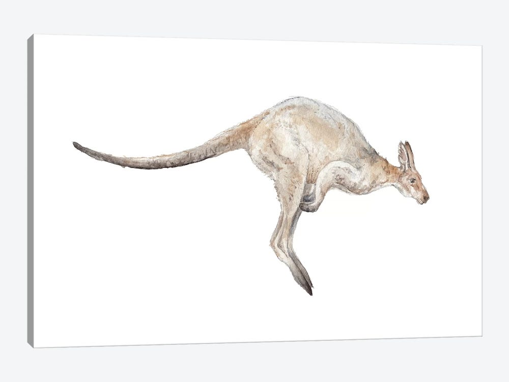 Kangaroo In Mid-Jump by Wandering Laur 1-piece Canvas Art