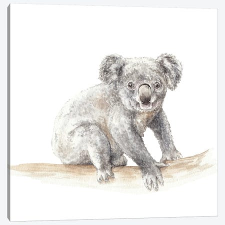Koala Canvas Print #RGF50} by Wandering Laur Canvas Print