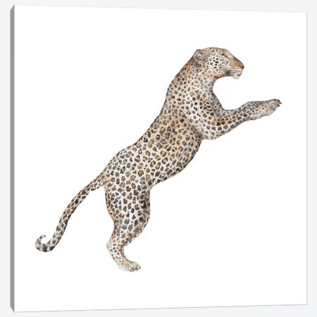 Leaping Leopard Canvas Print #RGF51} by Wandering Laur Canvas Art Print
