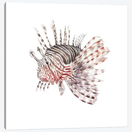 Lionfish Canvas Print #RGF53} by Wandering Laur Canvas Print