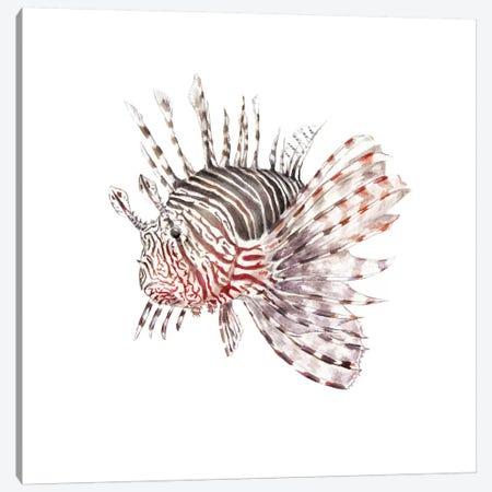 Lionfish Canvas Print #RGF53} by Wandering Laur Canvas Print