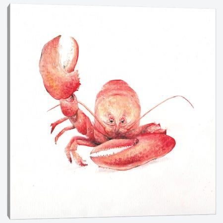 Lobster Canvas Print #RGF54} by Wandering Laur Canvas Art