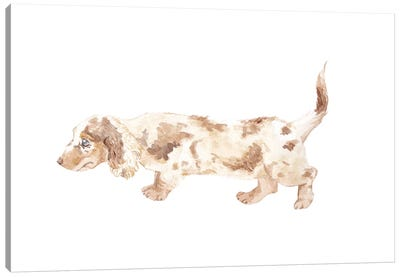 Long-Haired Dachshund Canvas Art Print
