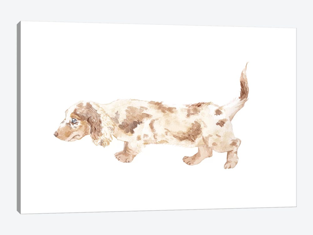 Long-Haired Dachshund by Wandering Laur 1-piece Canvas Art