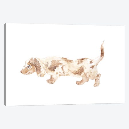 Long-Haired Dachshund Canvas Print #RGF56} by Wandering Laur Canvas Artwork