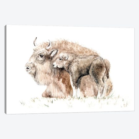 Home On The Range: Mama Buffalo And Her Calf Canvas Print #RGF57} by Wandering Laur Canvas Artwork