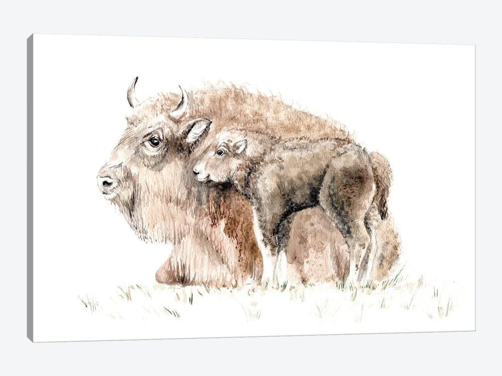 Home On The Range: Mama Buffalo And Her Calf by Wandering Laur 1-piece Art Print