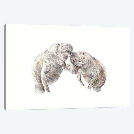Manatees Canvas Print #RGF58} by Wandering Laur Canvas Print