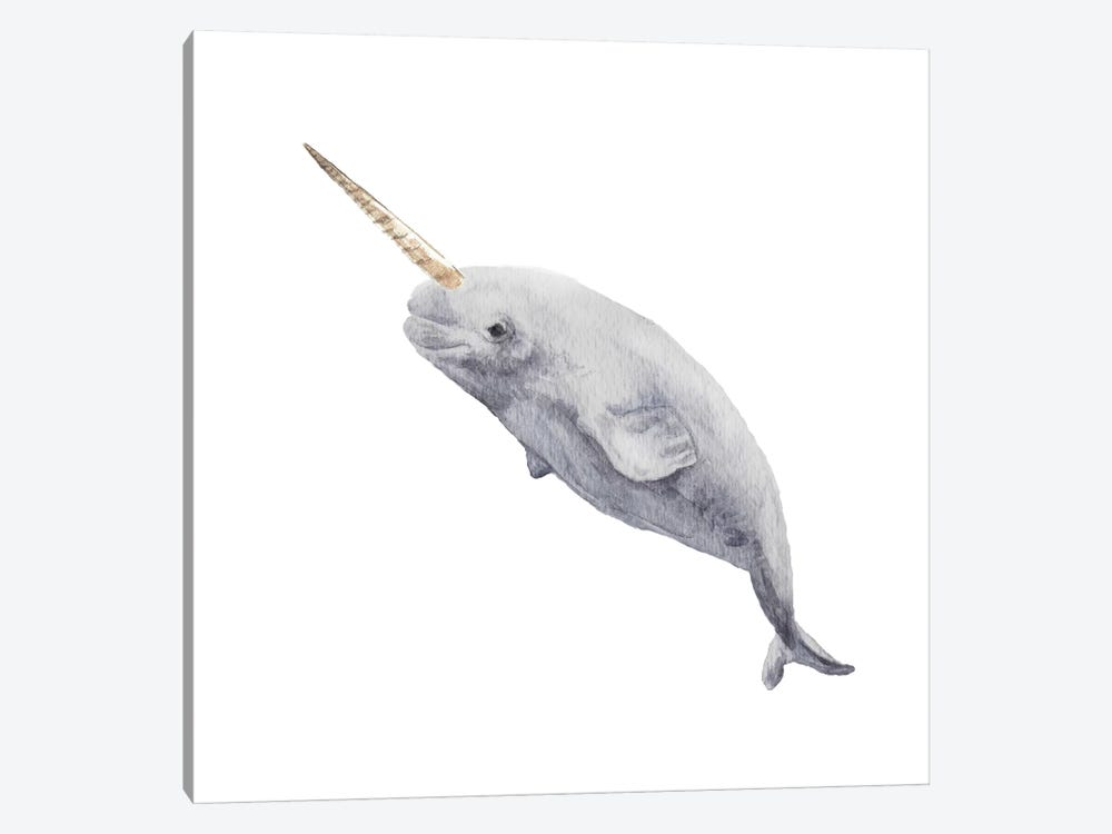 Narwhal by Wandering Laur 1-piece Canvas Print