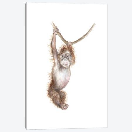 Baby Orangutan Canvas Print #RGF63} by Wandering Laur Canvas Art