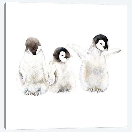 Penguin Chicks Canvas Print #RGF65} by Wandering Laur Art Print