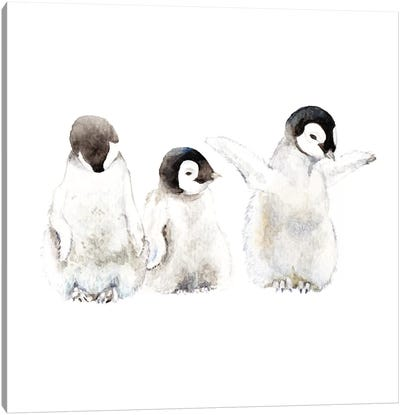 Penguin Chicks Canvas Art Print
