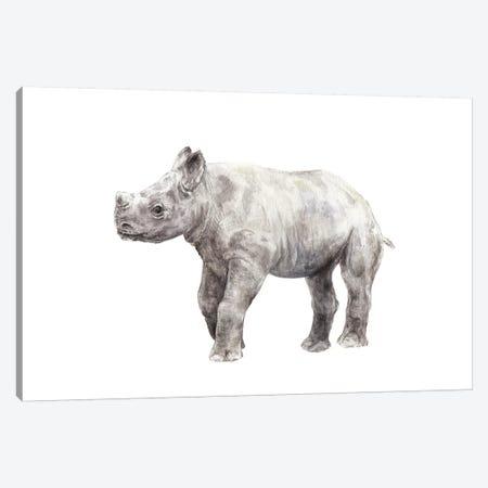 Rhinoceros Calf Canvas Print #RGF71} by Wandering Laur Art Print