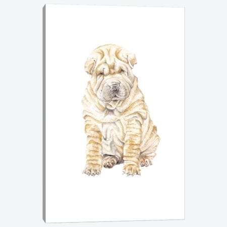 Shar Pei Canvas Print #RGF74} by Wandering Laur Canvas Wall Art