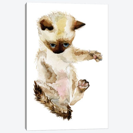 Siamese Kitten Canvas Print #RGF77} by Wandering Laur Canvas Wall Art