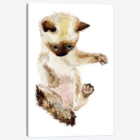 Siamese Kitten Canvas Print #RGF77} by Wandering Laur Canvas Wall Art