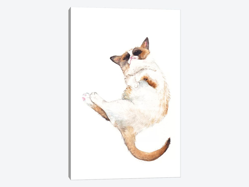 Silly Exotic Cat by Wandering Laur 1-piece Canvas Print