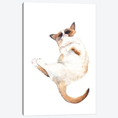 Silly Exotic Cat Canvas Print #RGF79} by Wandering Laur Art Print
